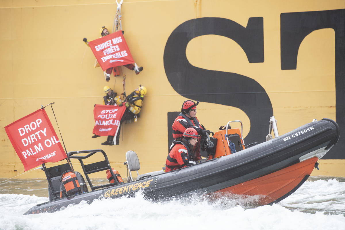 Activists prevent palm oil tanker from coming to port in Rotterdam © Marten van Dijl / Greenpeace