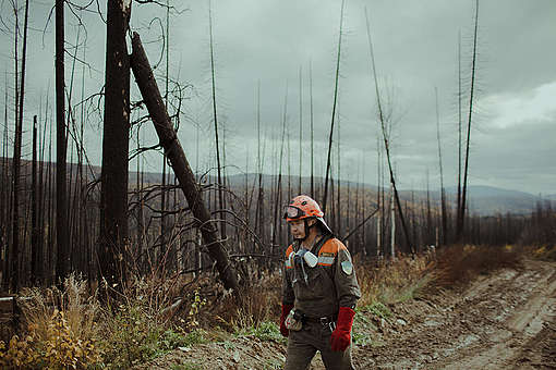 Boreal Wildfire Aftermath in Russia © Denis Sinyakov / Greenpeace