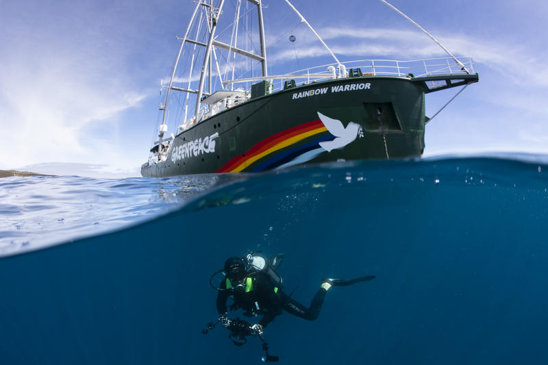 Diver with the Rainbow Warrior in the Great Australian Bight