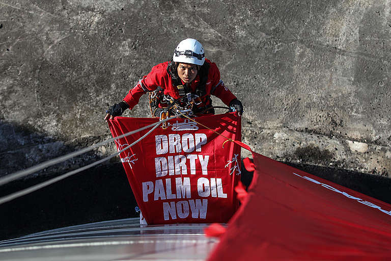 Thirty Greenpeace activists occupy a palm oil refinery © Dhemas Reviyanto / Greenpeace