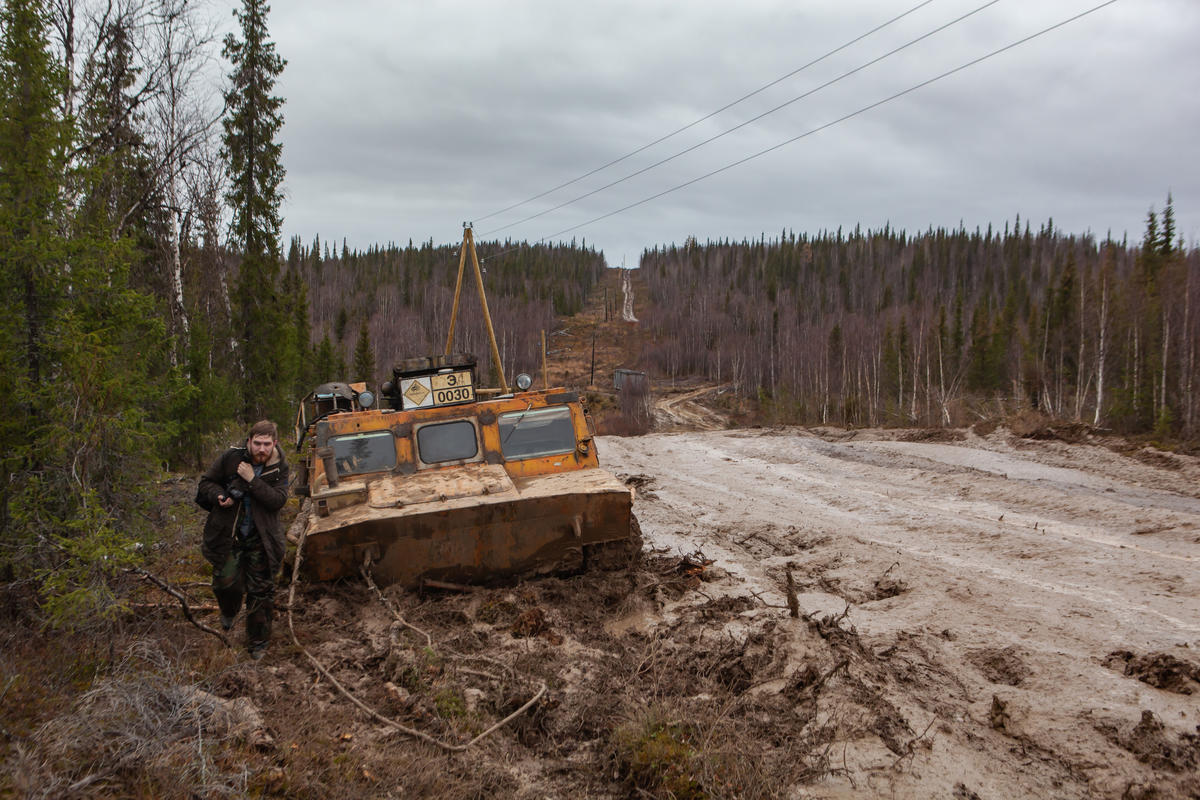 Forests are cut down in search of new oil deposits © Igor Podgorny / Greenpeace