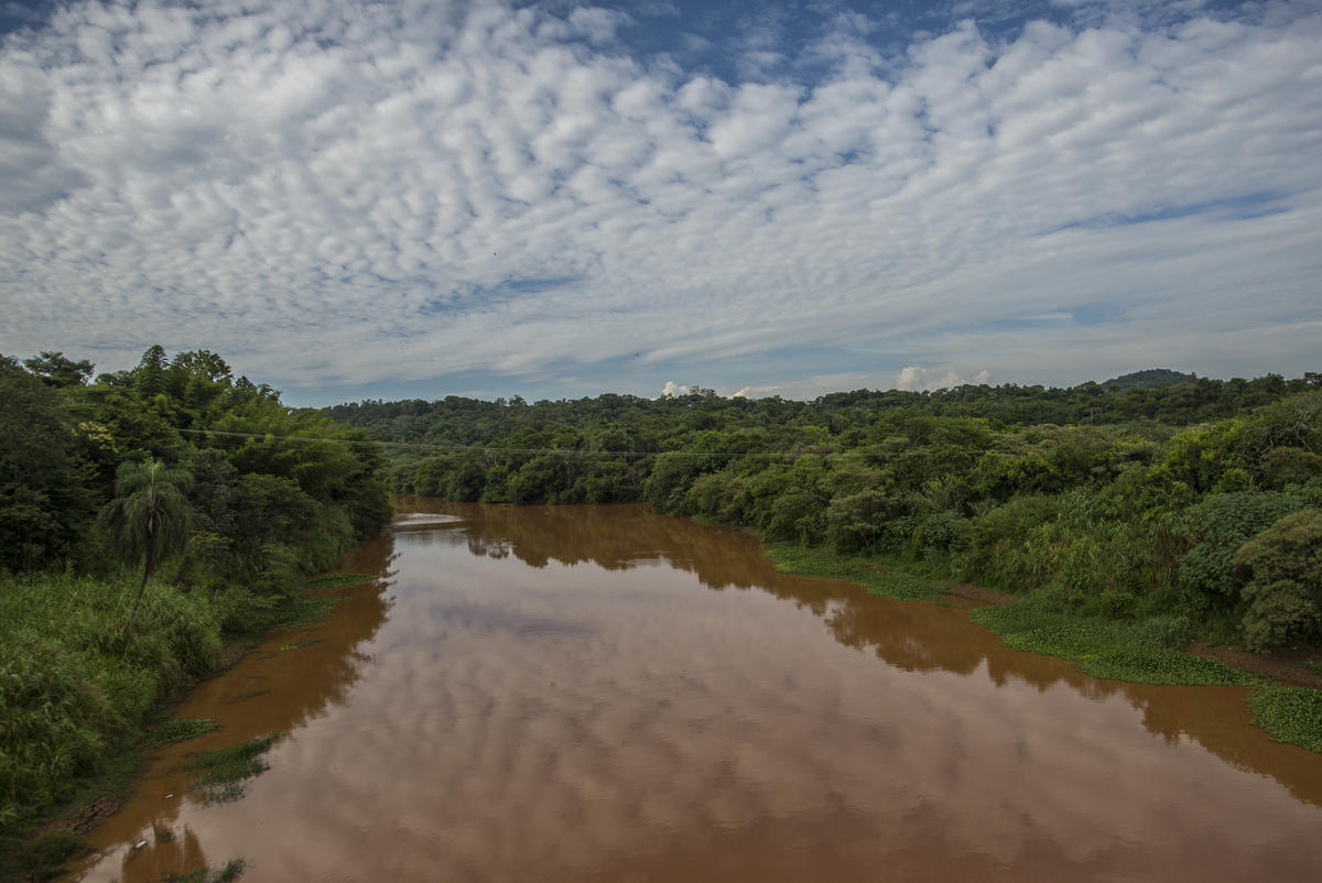 The Paraopeba River, affected by the mining waste dam the collapse in the city of Brumadinho, Brazil. © Christian Braga
