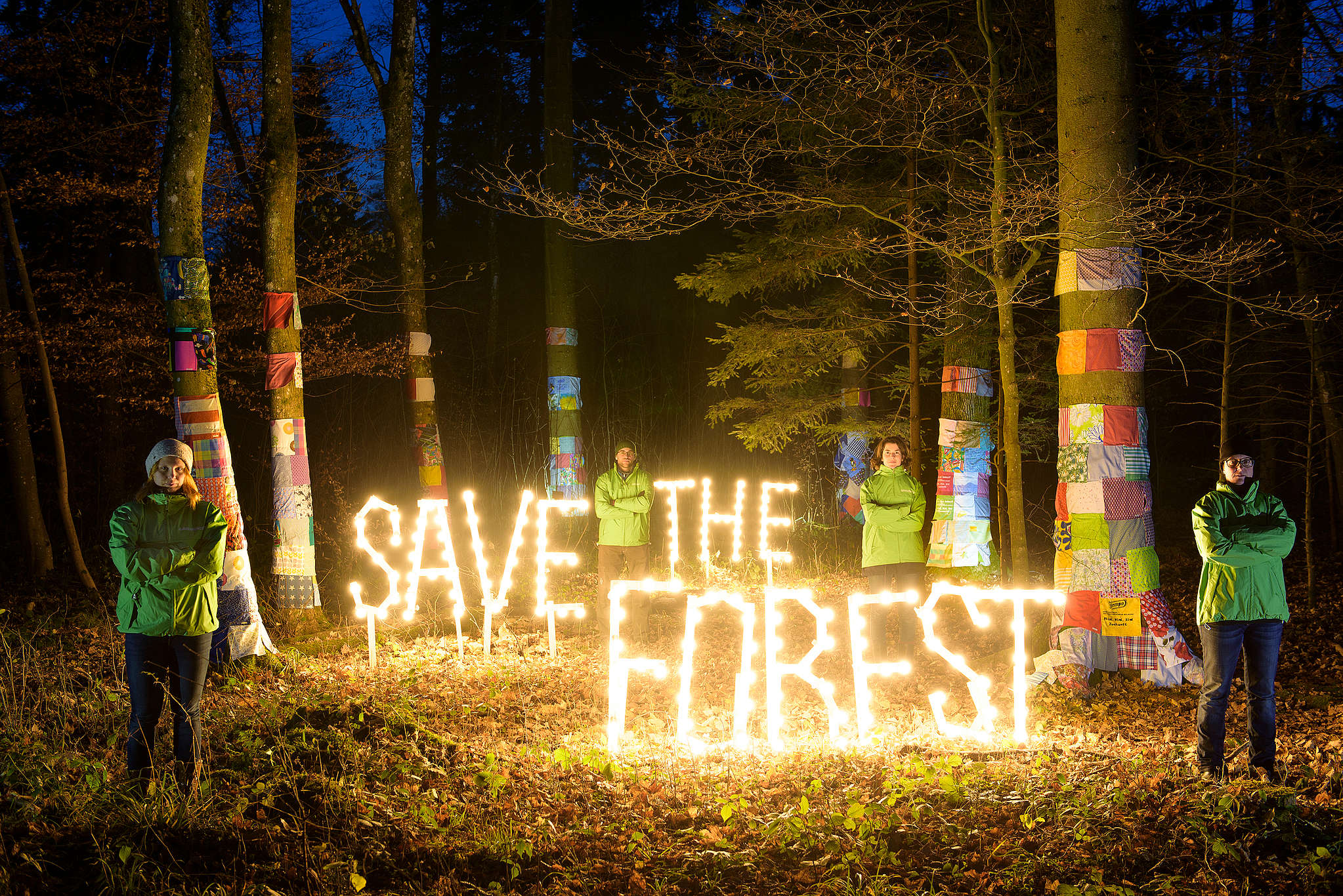 Save the Forest Light Installation in Switzerland