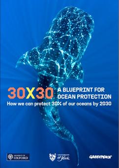 30x30: A Blueprint for Ocean Protection