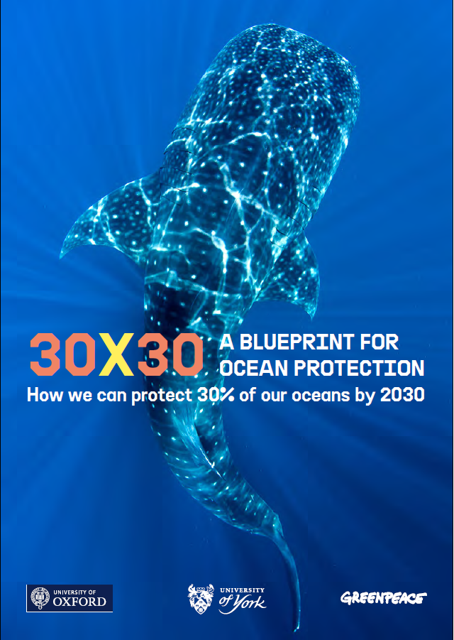Download our report 30x30: A Blueprint for Ocean Protection