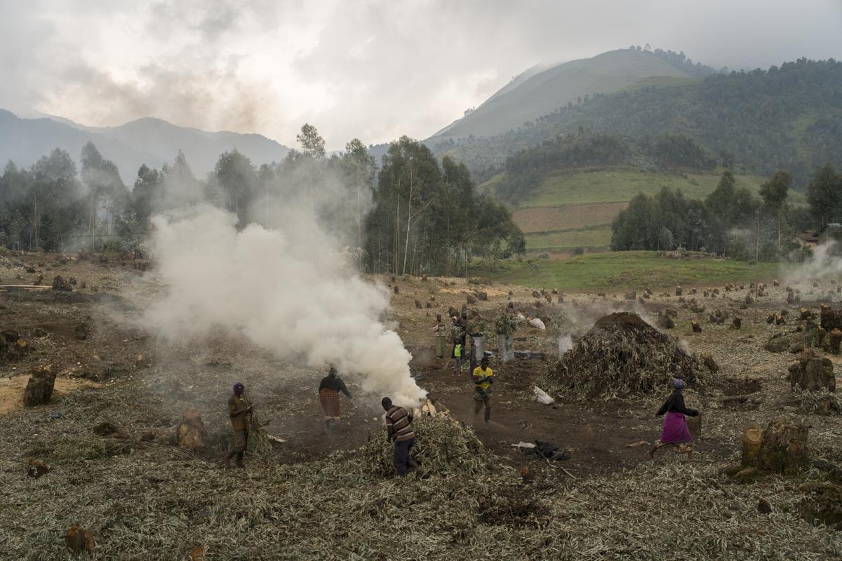 Locals in Nyabihu district, Rwanda, burn wood to make charcoal. © Diana Zeyneb Alhindawi