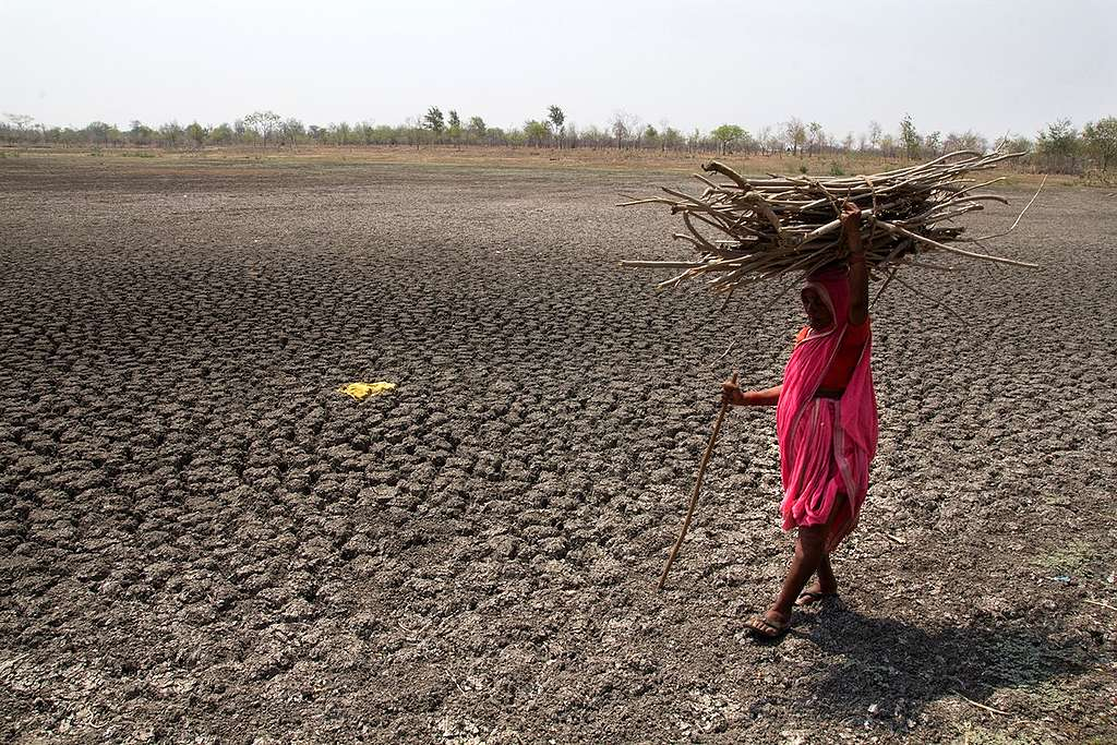 Drought in Maharashtra, India © Subrata Biswas / Greenpeace