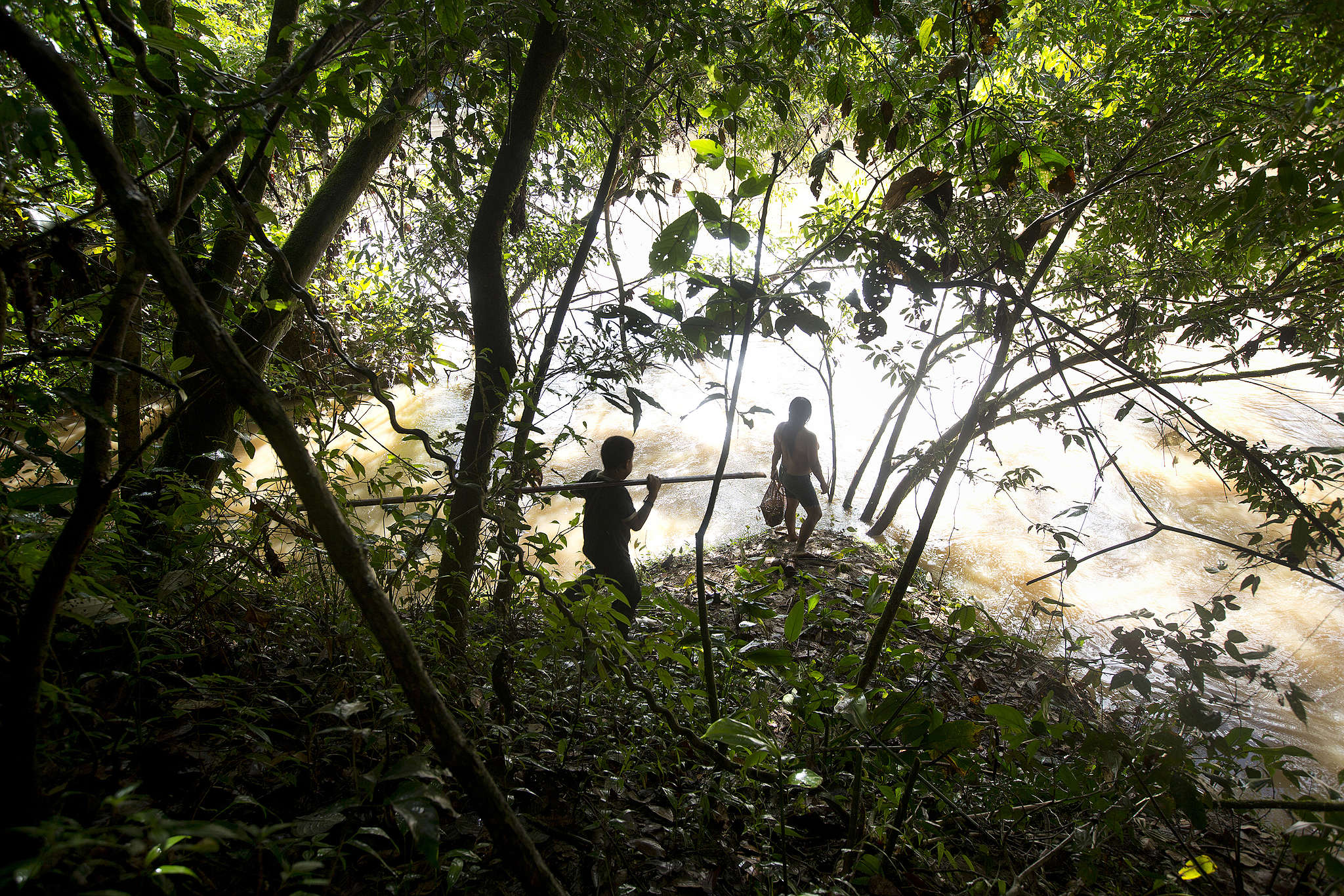 The Waorani and Kichwa Indigenous groups, among others, live in the Yasuni National Park in Ecuador. This precious part of the Amazon is home to millions of animal species and is under threat from the impact of oil exploration. © Karla Gachet