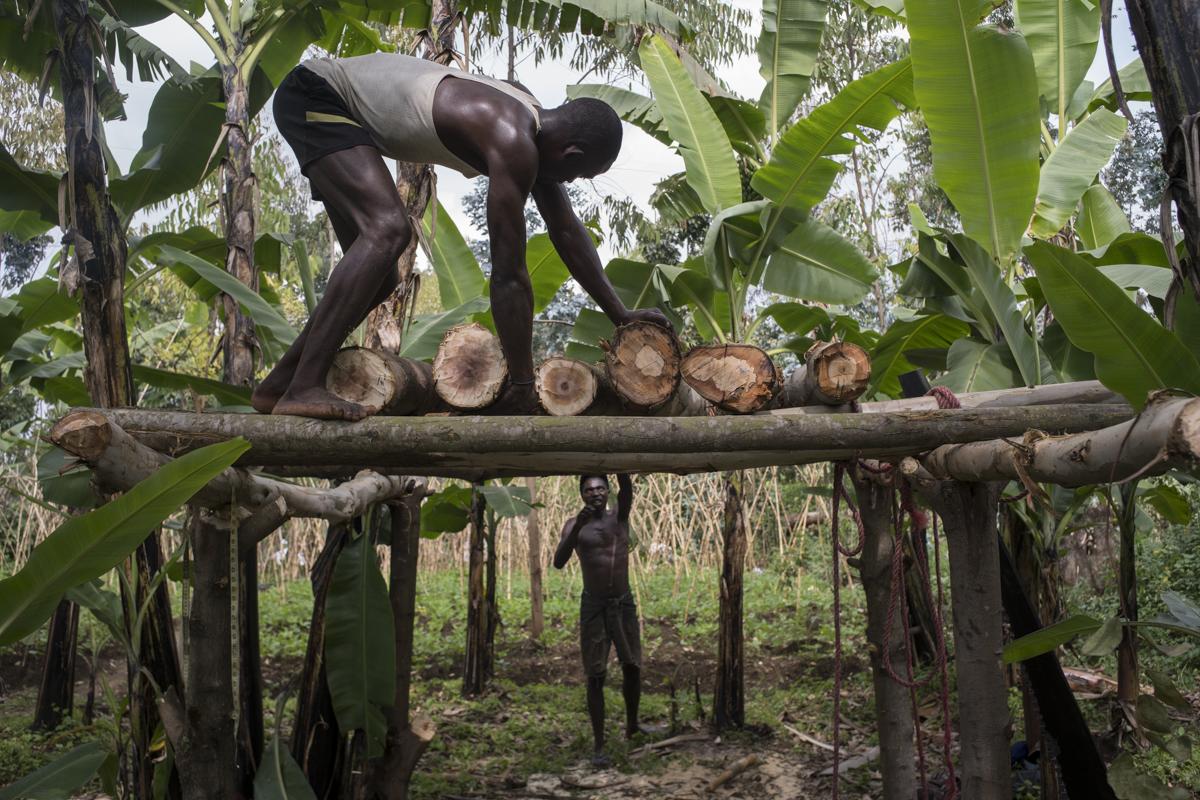 Locals from Gisenyi in western Rwanda chop trees and burn wood to produce charcoal. © Diana Zeyneb Alhindawi