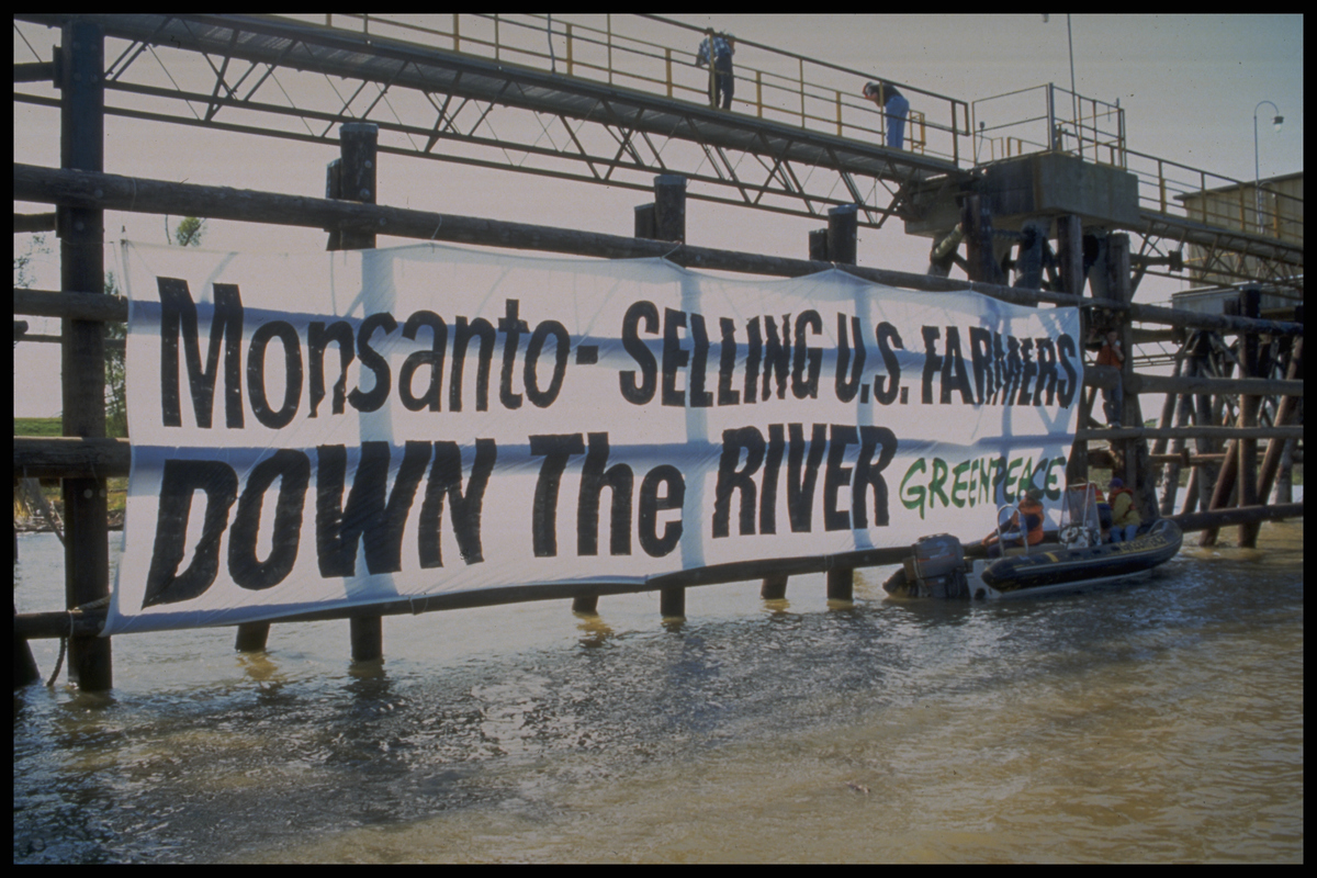 Action Against Monsanto and GE Soybeans in Louisiana © Greenpeace / Kent Hardouin