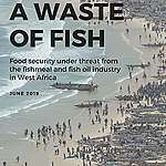 A Waste of Fish Report