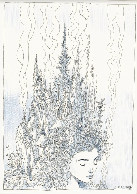 Chris Riddell's artwork