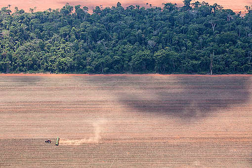 Deforestation in Mato Grosso. © Paulo Pereira / Greenpeace