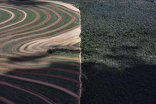 Agribusiness Rush in the MATOPIBA Region, in BrazilAvanço do agronegócio na região da MATOPIBA, Brasil.