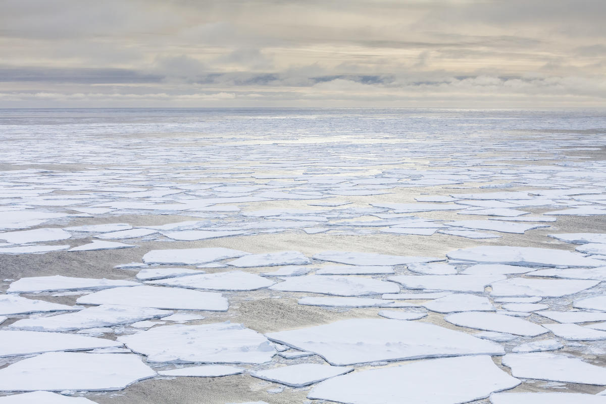 Scenic view of sea ice. © Will Rose / Greenpeace