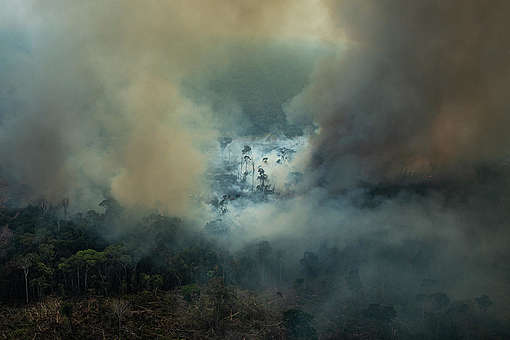 Forest Fires in Amazon - Second Overflight (2019). © Victor Moriyama / Greenpeace