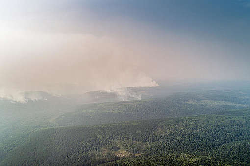 A Greenpeace Russia team is documenting forest wildfires in the taiga © Anton Voronkov / Greenpeace