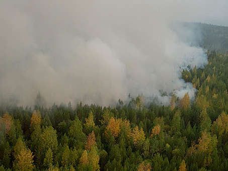 Forest Fires near Irkutsk Region in Russia © Igor Podgorny / Greenpeace