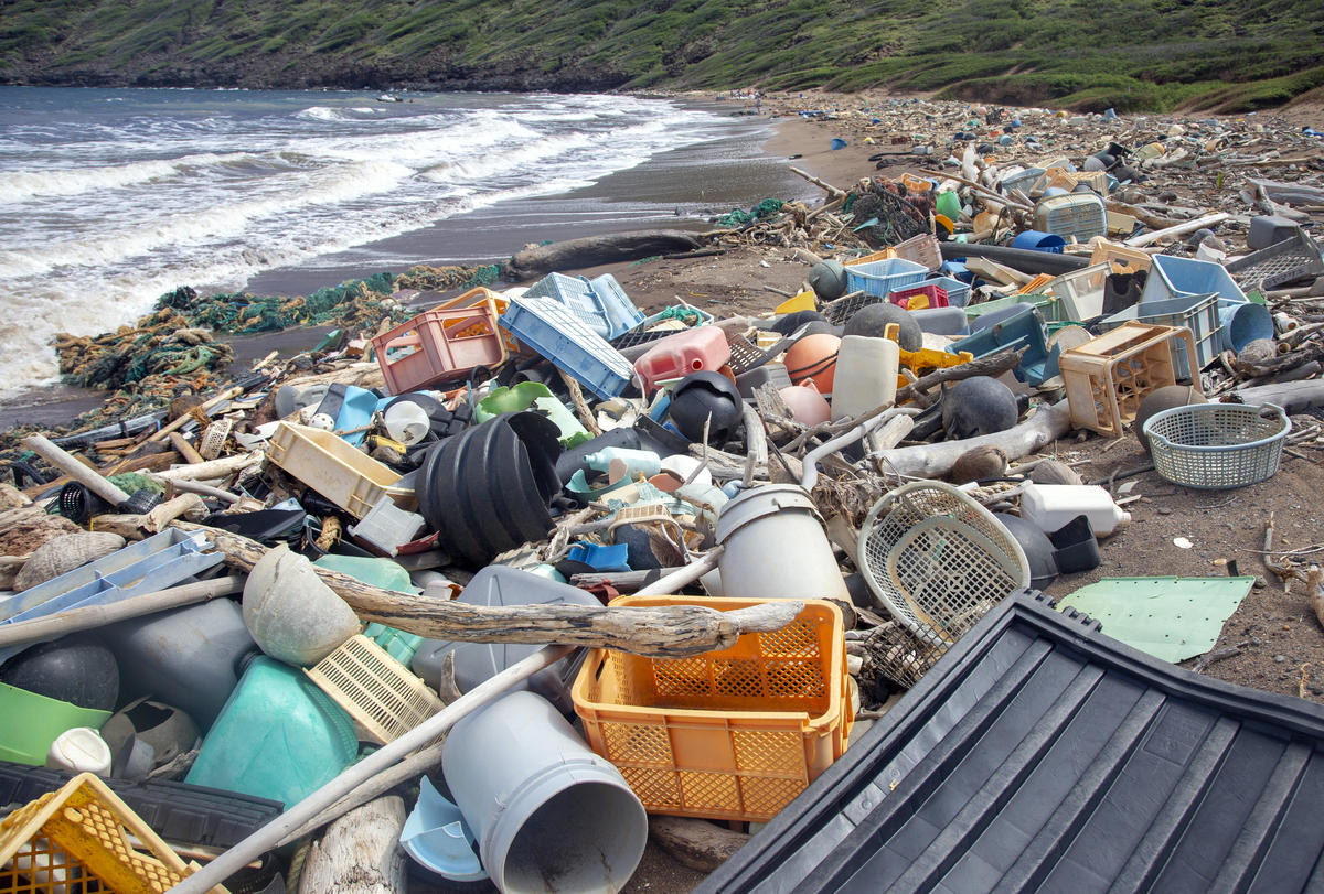 Inspired to tackle plastic pollution? Try a brand audit ...