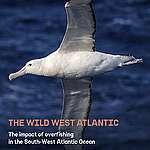 The Wild West Atlantic