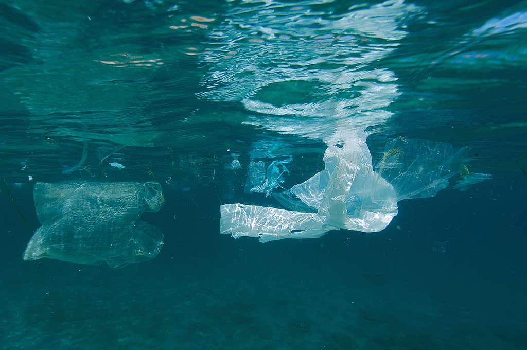 Floating Plastic. © Greenpeace / Gavin Parsons