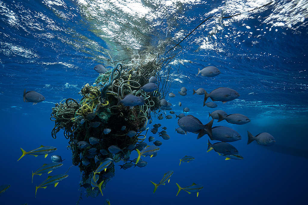 Ghost Fishing Nets in the Great Pacific Garbage Patch. © Justin Hofman / Greenpeace