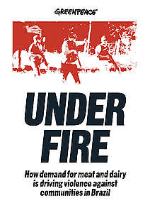 Under Fire Report Cover