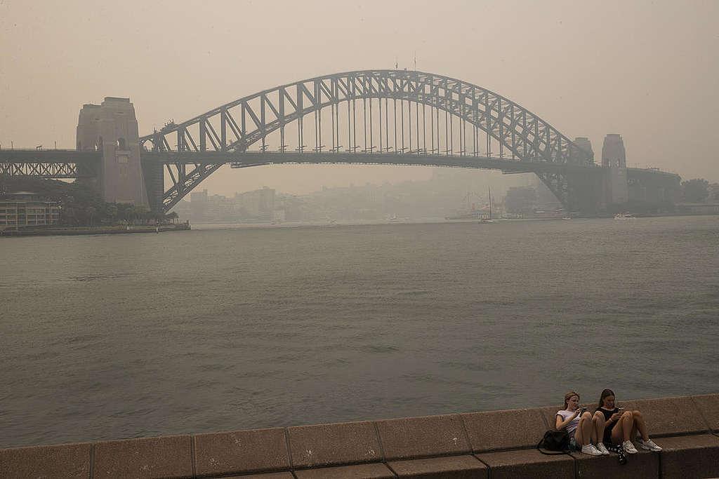 Smoke Haze in Sydney, NSW. © Cole Bennetts / Greenpeace