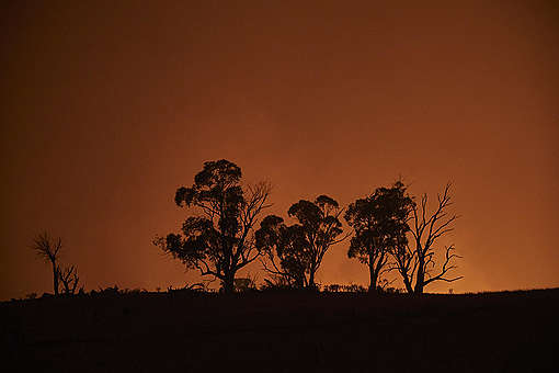 Bushfire in Snowy Mountains, Australia. © Kiran Ridley / Greenpeace