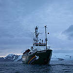 The Arctic Sunrise In Antarctica © Abbie Trayler-Smith / Greenpeace