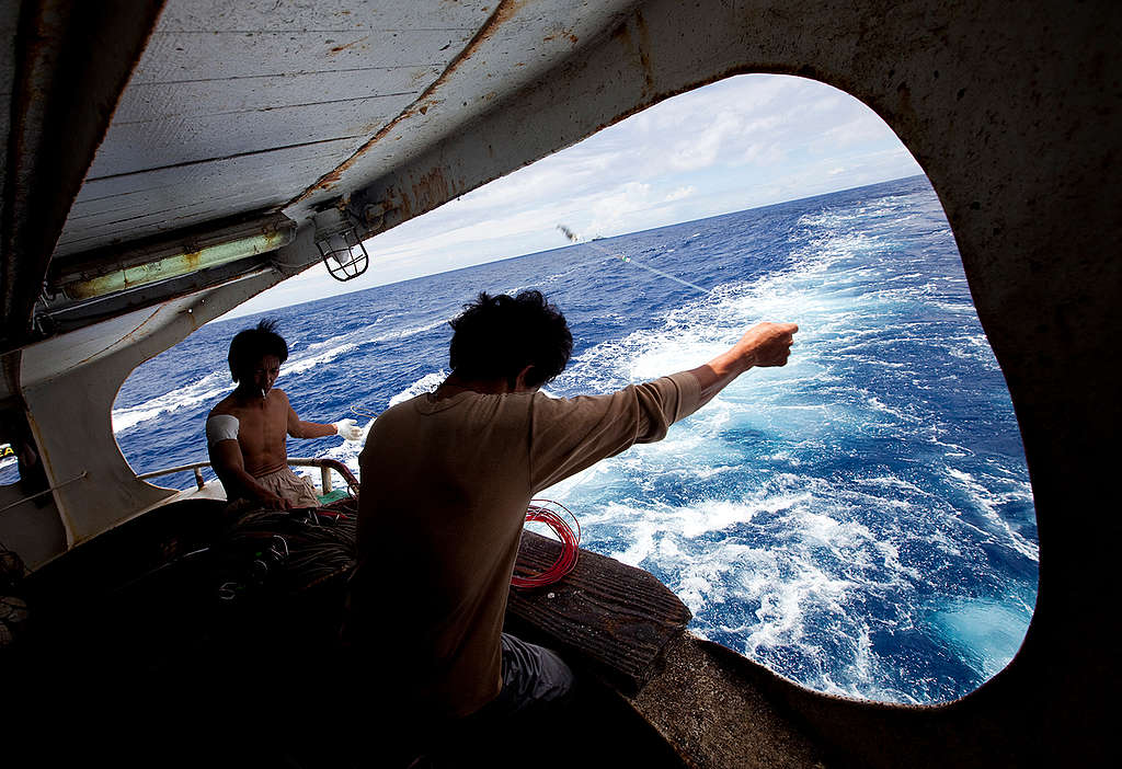 Taiwanese Fishermen in the Pacific Ocean. © Greenpeace / Paul Hilton