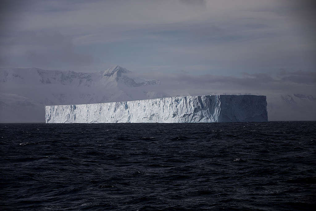 The Arctic Sunrise sails past a large iceberg in the Gerlach Strait, Antarctica.  © Abbie Trayler-Smith / Greenpeace