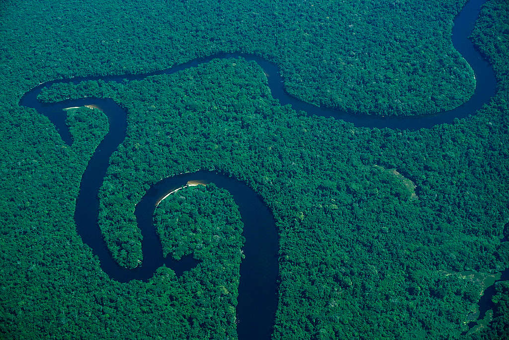 Aerial View over Amazon Rainforest © Rogério Assis / Greenpeace