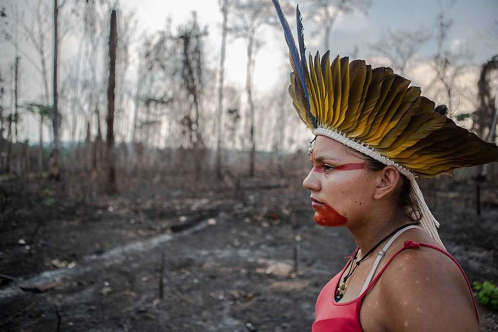 Member of the Huni Kuin Tribe in Brazil. © David Tesinsky / Greenpeace