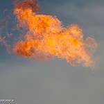 גרינפיס למשרד האנרגיה: לא לקדם תשתיות גז ונפט בזמן משבר הקורונה