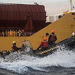 Sei attivisti di Greenpeace arrestati a bordo di una nave che trasporta olio di palma in Europa