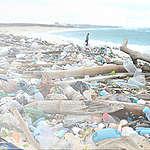 """Direttiva sulla Plastica monouso, Greenpeace: """"Dall'Europa segnale importante ma non sufficiente"""""""