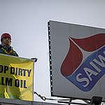 Vittoria per Greenpeace: Wilmar, il più grande commerciante di olio di palma al mondo, si impegna a ripulire la propria filiera