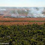 Bolsonaro vuole svendere l'Amazzonia all'agrobusiness