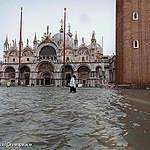 Venezia: Greenpeace: «Basta parole ipocrite e provvedimenti di facciata, servono azioni urgenti contro l'emergenza climatica in corso»