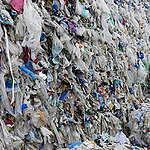 Altro che riciclo, ecco dove vanno a finire i nostri rifiuti di plastica