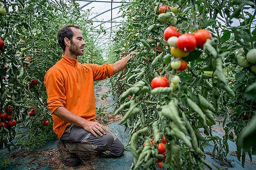 An Organic Farmer in Bretagne. © Emile Loreaux / Greenpeace