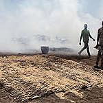 La produzione di farina di pesce per gli allevamenti intensivi svuota i mari dell'Africa occidentale