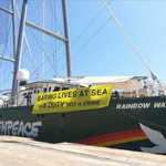 "Sea Watch 3, Greenpeace: ""Salvare vite è un dovere, non un crimine"""
