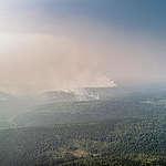 Greenpeace: In Siberia è emergenza climatica, bruciata un'area grande come Lombardia e Piemonte messe insieme