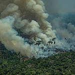 Incendi: quello che accade in Amazzonia non resta in Amazzonia
