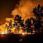 Non solo l'Amazzonia: anche l'Indonesia è in fiamme