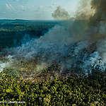 Amazzonia, deforestazione record: è la più alta degli ultimi 10 anni