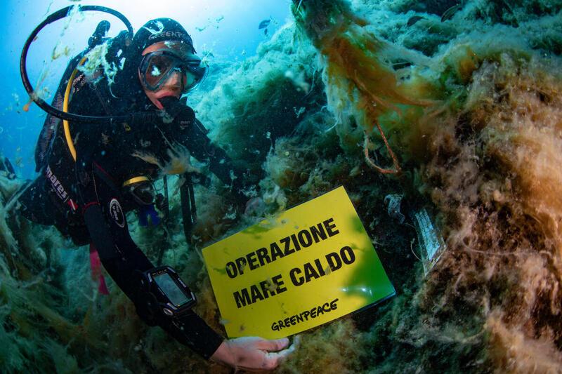 I cambiamenti climatici sono già nel Mar Tirreno, la conferma dai nostri rilevamenti