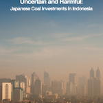 Uncertain and Harmful: Japanese Coal Investments in Indonesia